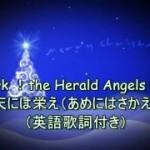 クリスマスと年末の第九の季節ですね。 ^^